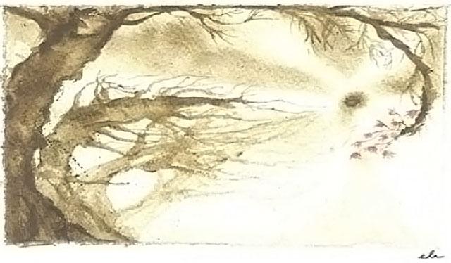 Progetto L'autunno delle donne, Acquerello di Eliana Valentini