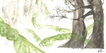 Progetto L'autunno delle donne, Acquerello di Eliana Valentini per Zeroconfini Onlus
